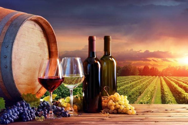 Wine & Food Tours - Italian Tours
